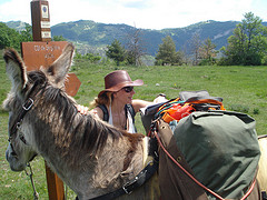 donkey-trekking