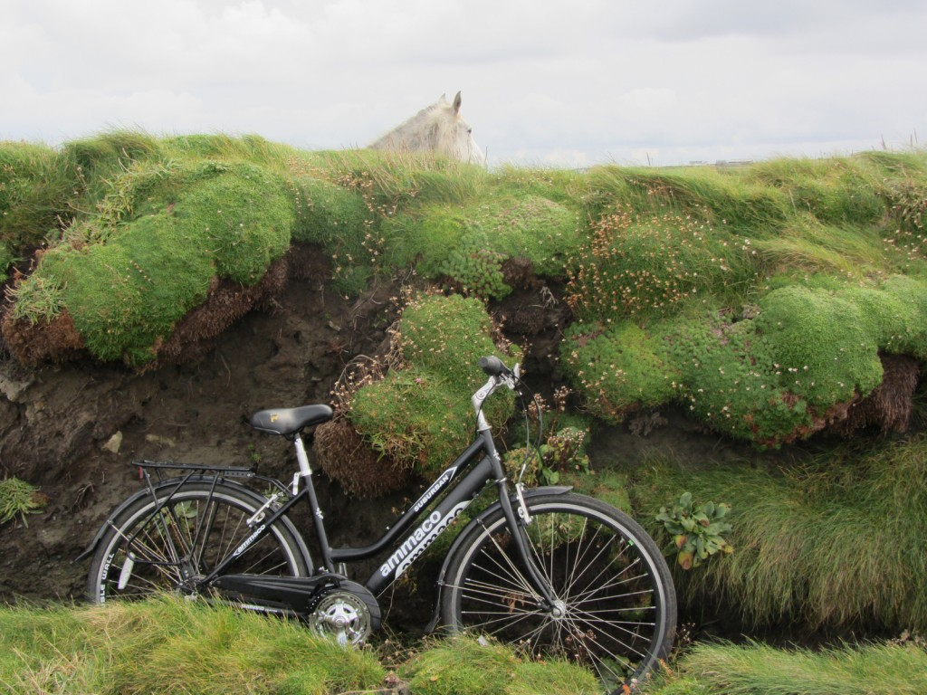 Cycling along the Loop Head Cycle Trail, with hardly a soul en route Photo: Catherine Mack
