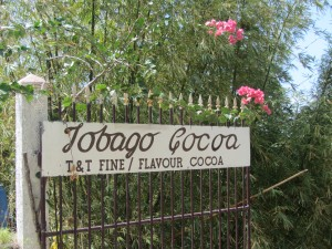 Tobago Cocoa Plantation