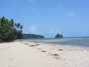 Salybia Beach, Trinidad