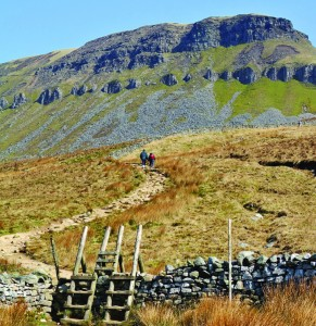Double ladder stile on Pen y Ghent - in summer. Photo: HF Holidays