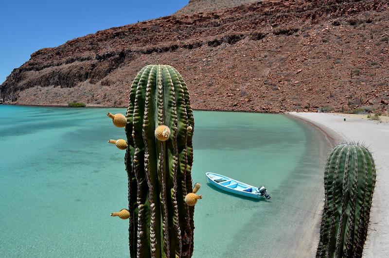 Isla Espiritu Santo, Baja California Sur, Mexico - one of the best spots for sea kayaking in Mexico