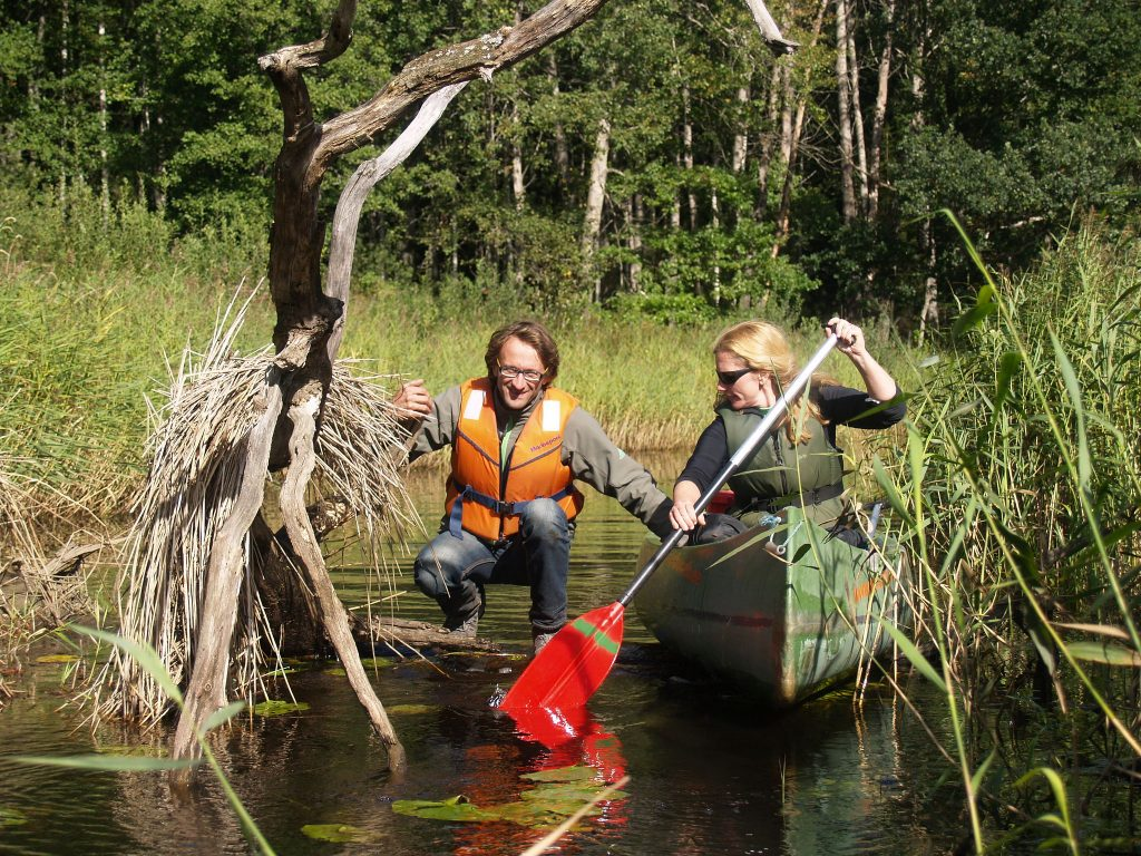 Canoeing on an adventure holiday in Estonia's Soomaa National Park