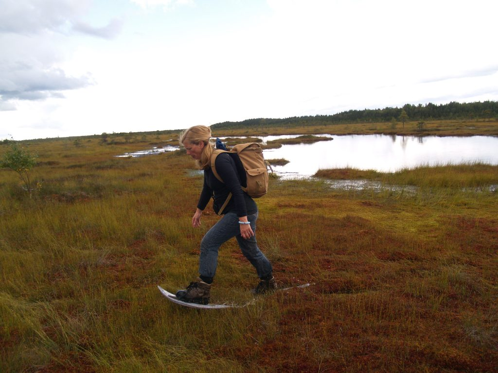 Bog shoeing in Soomaa National Park on an adventure holiday in Estonia